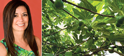Adelaide Polsinelli and a fig tree