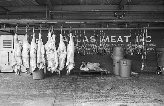 packing-meat-and-shipping-it-off-to-retailers