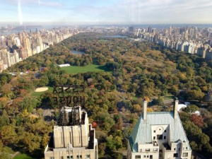 View of Central Park from the new model unit
